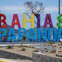 Bahias De Papanoa