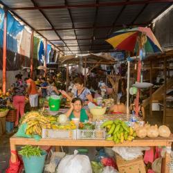 Gallery: Mercado Campesino