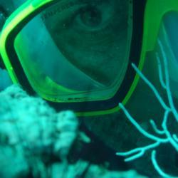 Covers Snorkeling Tours Zihuatanejo Snorkel Ixtapa