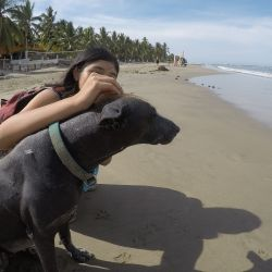 Zihuatanejo's Pet friendly beaches