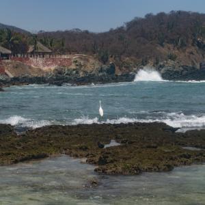 Isla Ixtapa Island