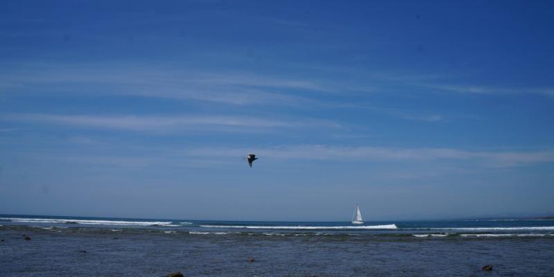 Playa La Saladita Guerrero