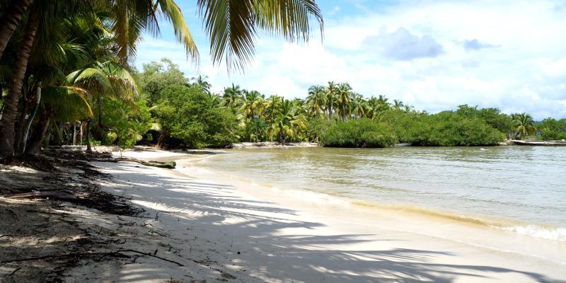 Playa Las Gatas Zih
