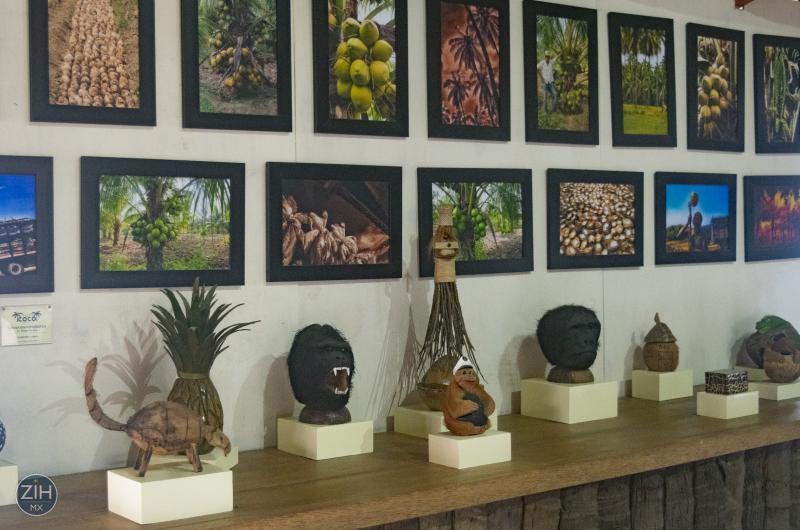 El Museo Del Coco Area