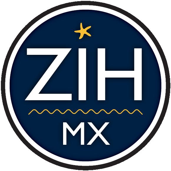 Carnaval Zihuatanejo 2019